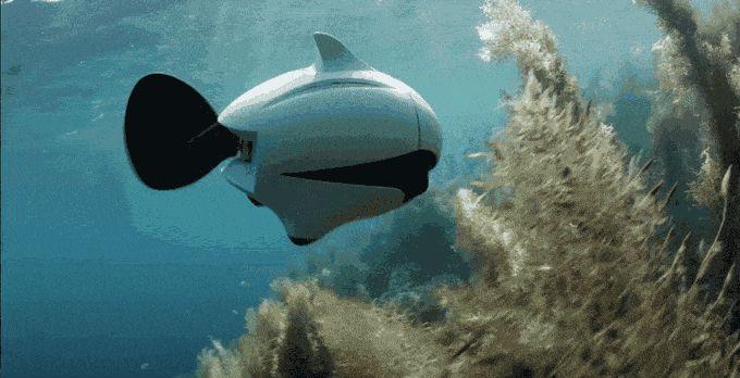 Biki, primer drone biónico subacuático