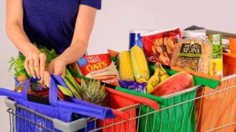 Trolley Bags, sistema de bolsas plegables para el carrito de la compra