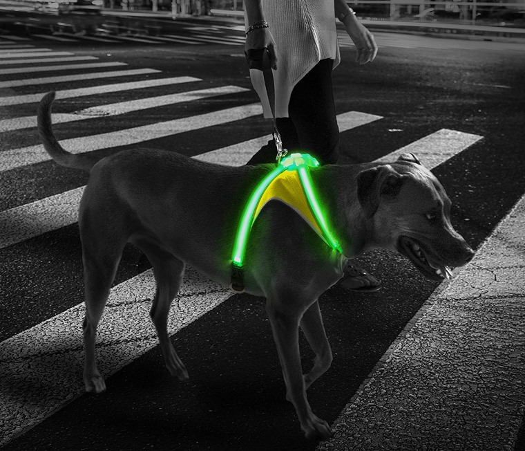 Noxgear LightHound, arnes con luces para perros