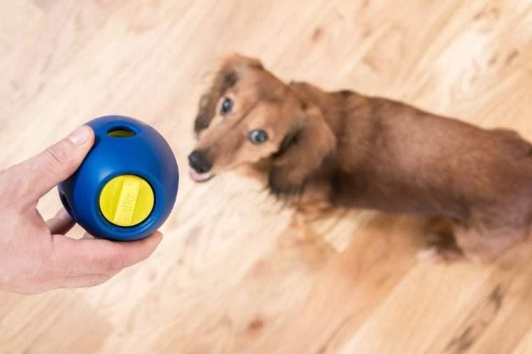 Tikr Snack, juguete para perros con dispensador de golosinas