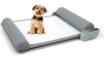 BrilliantPad, el innodoro intelifente para perros